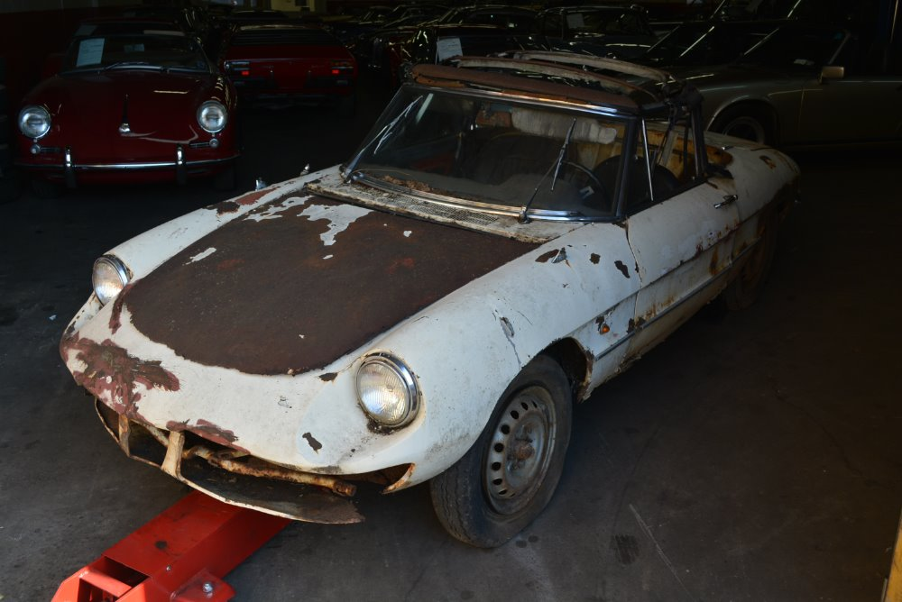Alfa Romeo Duetto Spider Stock For Sale Near Astoria - 1967 alfa romeo spider for sale